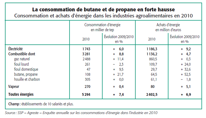 consommation_achat_energie_industries_agroalimentaires_2010