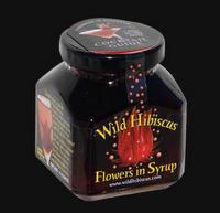 wild_hibiscus