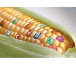 OGM, les votes sont attendus.