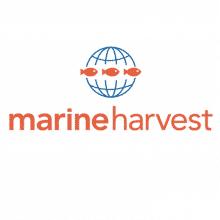 Nouveaux locaux pour Marine Harvest.