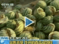 Explosion de pastèques en Chine !