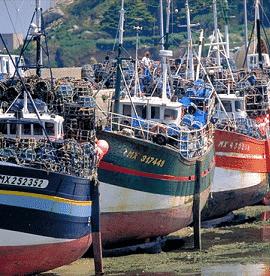 La pêche bretonne sur le point de couler ?