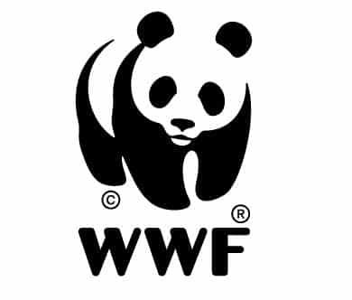 Le WWF distribue les bons et mauvais points quant à l'huile de palme.