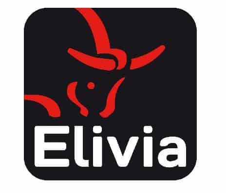 Les salariés de la Sécah en grève pour dénoncer les agissements d'Elivia.