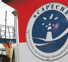 Non, Les Mousquetaires ne sont pas des pêcheurs responsables !