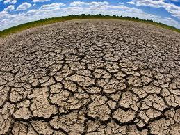 La FAO veut mieux gérer les ressources hydriques et de sauvegarder la sécurité alimentaire