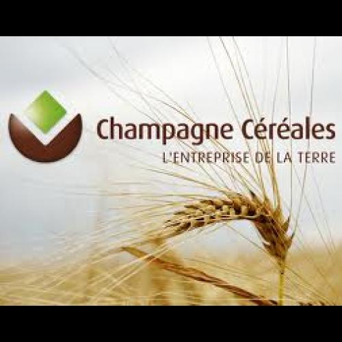Champagne Céréales