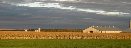 Monsanto investit 45 millions dans les Landes