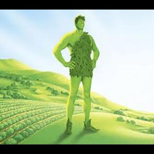Géant Vert