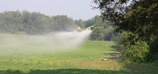 Les pesticides empoisonnent l'industrie agroalimentaire