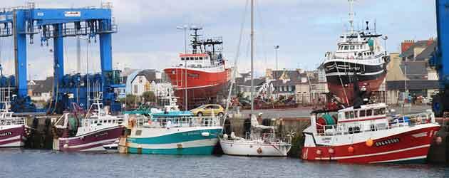 Pêche: impacts insoupçonnés de l'interdiction du rejet des poissons