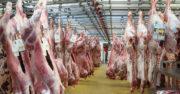 Viande: les abattoirs AIM ont peut-être trouvé deux repreneurs