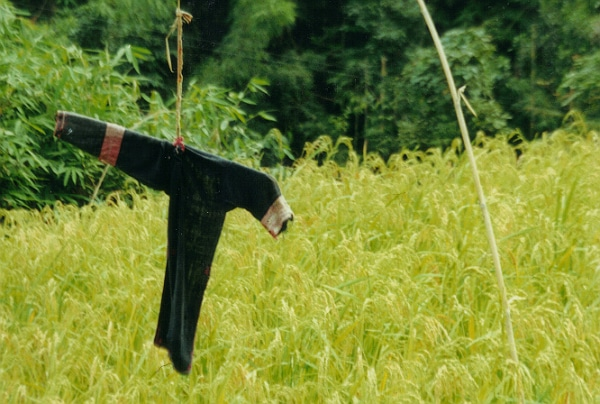 Un drone épouvantail pour sécuriser les champs