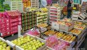 L'Etat pourrait-il privatiser le marché de Rungis?