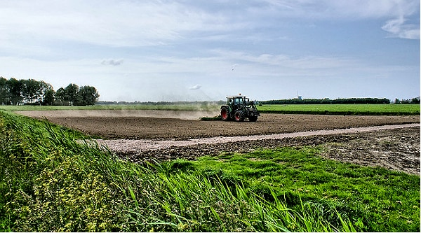 Agriculture: le rapport d'un eurodéputé accable la PAC qui «n'a pas créé d'emploi»