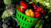 Agriculture: En colère, les agriculteurs distribuent des fruits et légumes aux Parisiens