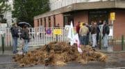 Des agriculteurs en colère déversent du fumier dans le centre-ville de Lille