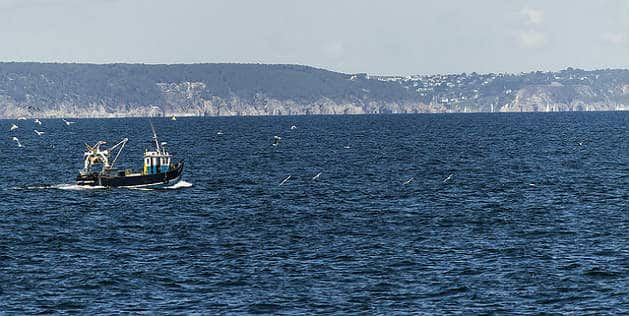 Pêche: accord conclu sur les quotas en 2015