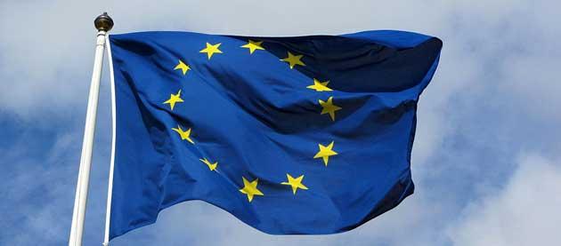 Réglementation: l'Europe interdit la commercialisation d'insectes comestibles