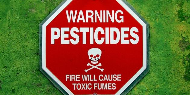 Pesticides: une utilisation en hausse de 9,2% en 2013