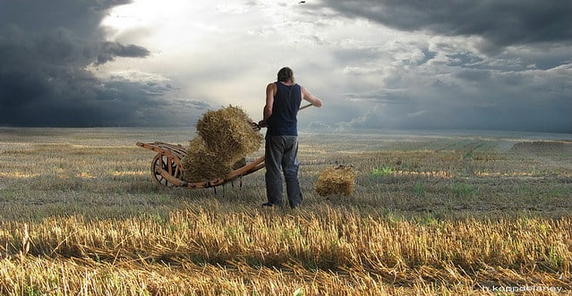 L'agroalimentaire: un secteur qui cherche à recruter