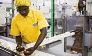 L'Afrique, futur eldorado de l'agroalimentaire ?