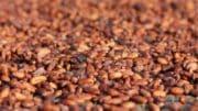 Agroalimentaire : chiffres et bilan pour 2014