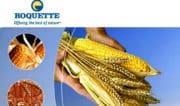 Le Groupe Roquette et Bpifrance annoncent le succès du programme BioHub