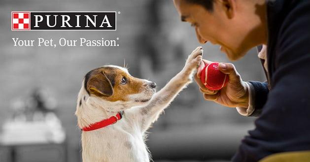 TerraVia et Nestlé Purina s'associent dans l'alimentation animale