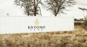 Entomo Farm, premier fabricant de systèmes industriels pour l'élevage d'insectes, se met au crowdfunding