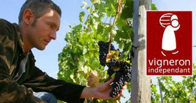 Soufflet Vigne devient partenaire des Vignerons indépendants de France