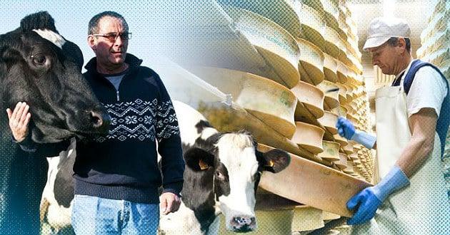 La FNCL demande le maintien pour 2016 des engagements dans la filière laitière