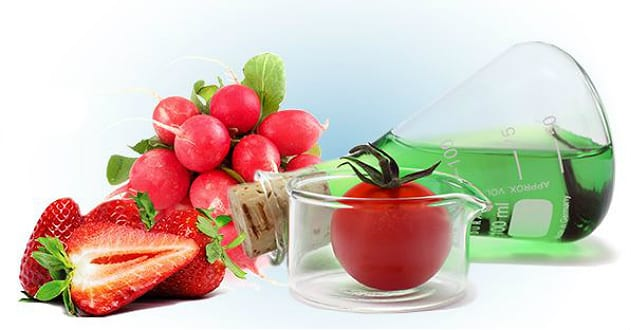 Diana food renforce son expertise en canneberge agro media for Diana dishes