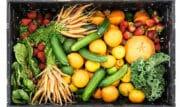 Gelagri et Système U s'engagent sur une gamme de légumes surgelés premium