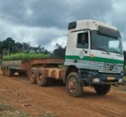 Croissancedes IAA : La performance du Gabon