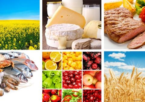 Formations : CARSO lance une nouvelle offre en agroalimentaire