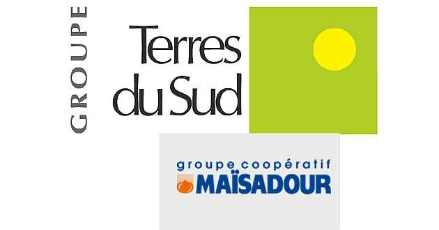 Terres du Sud & Maïsadour en piste pour une union coopérative