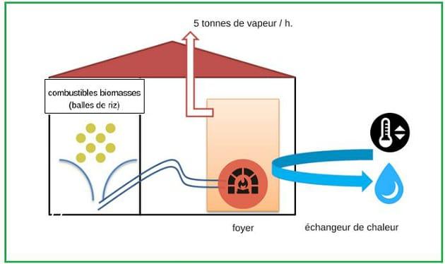 Neovia installe une chaudière à biomasse au Vietnam