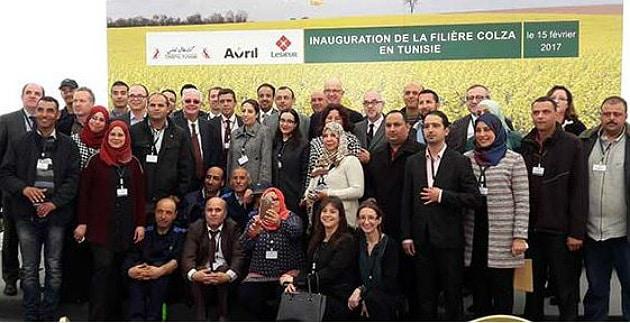 La Tunisie lance une filière colza 100 % tunisienne avec l'aide d'acteurs français