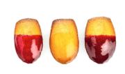 La Food Solutions de chez Monin en base fruits