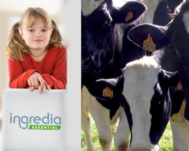 Production laitière: Ingredia et La Prospérité Fermière signent un partenariat avec WWF France