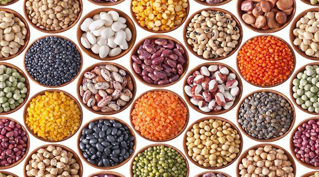 Etats généraux de l'alimentation : Le GEPV surprit par l'absence de discussions sur les protéines végétales