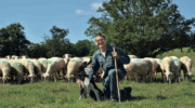 Les Halles de l'Aveyron : Ouverture d'un 3e point de vente