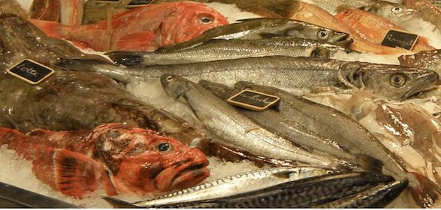 Etiquetage des produits aquatiques : La nécessité d'une plus grande communication dans la filière