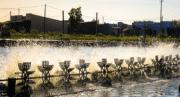 Neovia annonce le rachat d'Epicore, un des experts en probiotique du marché mondial aquacole