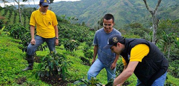 Nespresso va investir dans le café colombien
