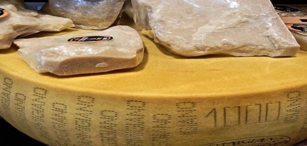 Parmesan et Grana Padano : CIWF dénonce les dessous de ces produits d'excellence