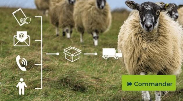 Traçabilité : Easytag, une nouvelle solution pour les professionnels de l'élevage