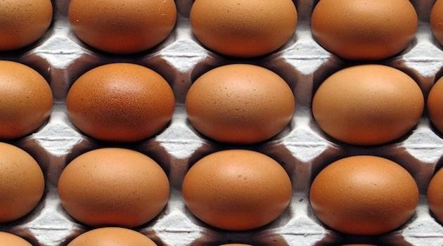 Les professionnels de la filière des œufs mécontents