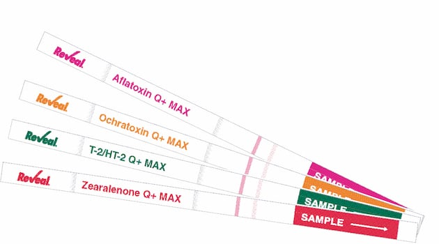 Hygiène et sécurité alimentaire : La gamme révolutionnaire de tests pour les mycotoxines de Neogen